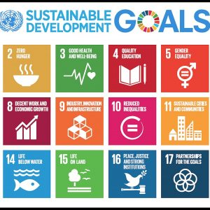 2048px-Sustainable_Development_Goals