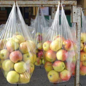 Biobasierte Verpackungsfolien für Lebensmittel