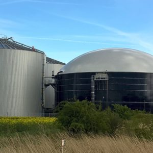 Biogasnalage