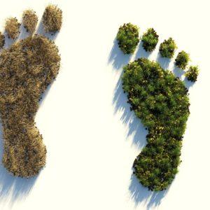 Bioökonomie Fußabdruck Monitoring