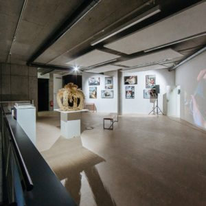 Die Wissenschafts- und Kunstgalerie STUDIO ART in Berlin macht die Ergebnisse erlebbar © Anne Freitag Fraunhofer-Institut für Umwelt-, Sicherheits- und Energietechnik UMSICHT