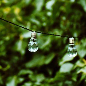 Glühbirne_Natur